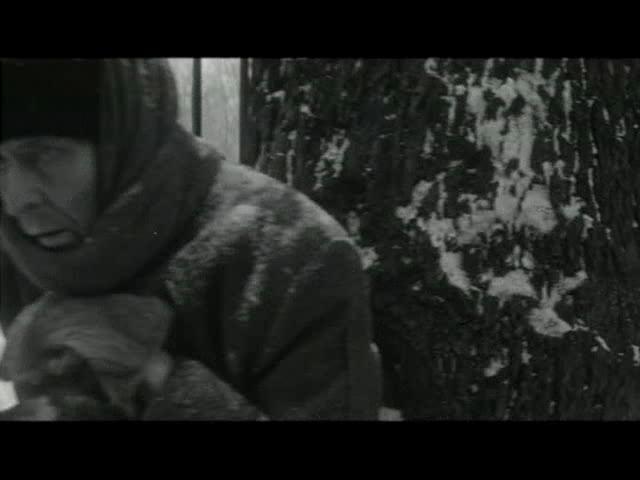 Зимнее утро - Zimneye utro