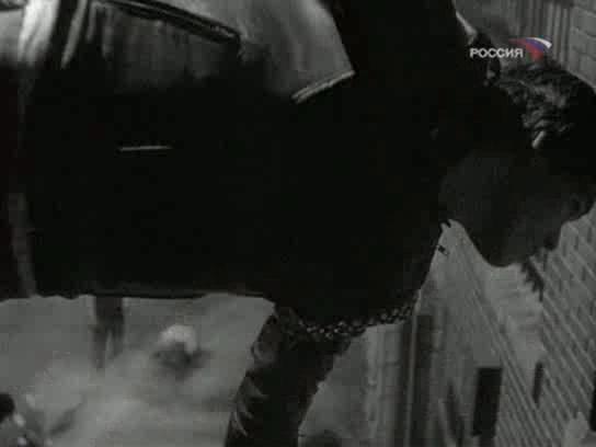 Бойцовая рыбка - Rumble Fish