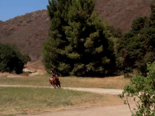 Одиночка - Lone Rider