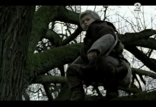 Ведьмак - Wiedzmin