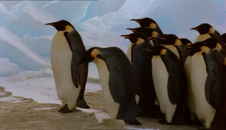 ВВС: Пингвины - BBC: Penguins of the Antarctic