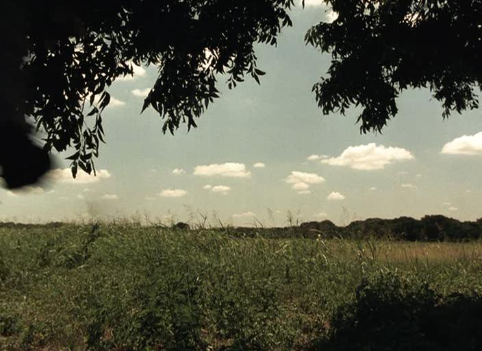 Техасская резня бензопилой - The Texas Chainsaw Massacre