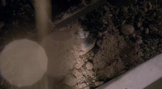 ����������. ����� 4 - The Pretender. Season IV