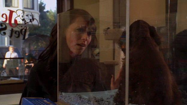 Говорящая с призраками. Сезон 2 - Ghost Whisperer. Season II