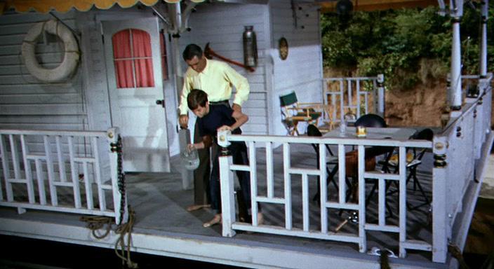 Плавучий дом - Houseboat
