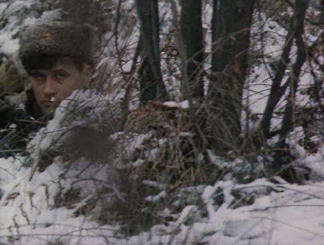 В лесах под Ковелем - V lesah pod Kovelem