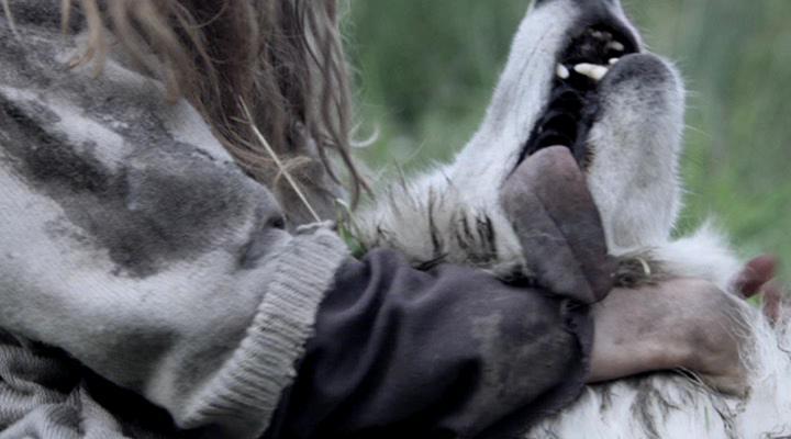 Выживая с волками - Survivre avec les loups