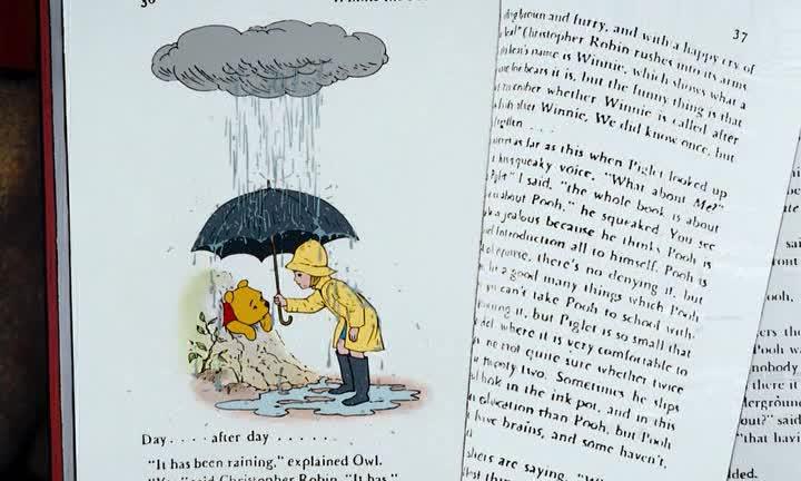 Приключения Винни Пуха - (The Many Adventures of Winnie the Pooh)