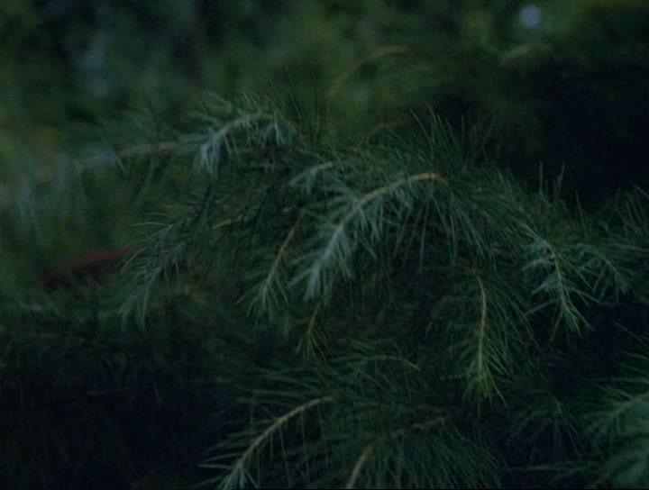 На Дерибасовской хорошая погода или на Брайтон Бич опять идут дожди - Na Deribasovskoy khoroshaya pogoda, ili na Brayton Bich opyat idut dozhdi