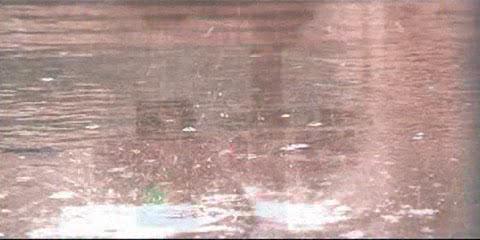 Waterborne - Waterborne