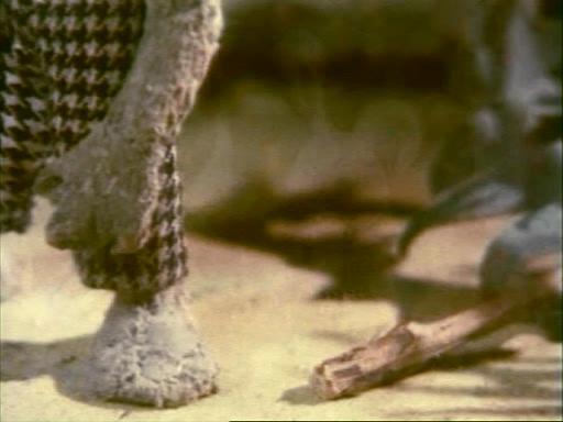 Бояка мухи не обидит: Бояка учится летать - Bojaka mukhi ne obidit: Bojaka uchitsya letat