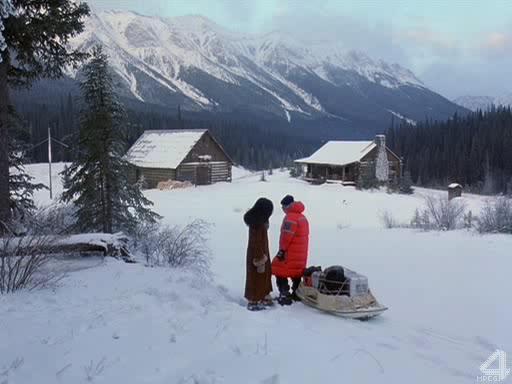Снежные псы - Snow Dogs