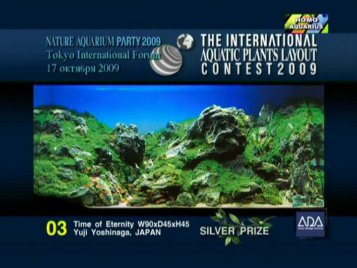 Природный аквариум Такаши Амано