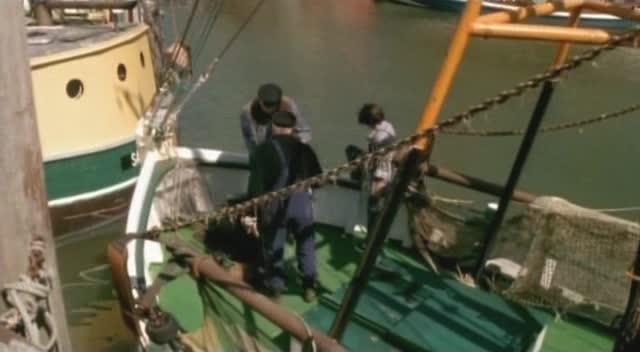Тюленeнок из Сандеруга - Der Seehund von Sanderoog