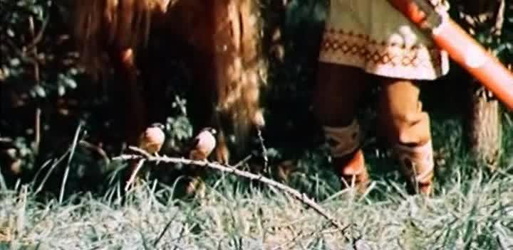 Финист - Ясный сокол