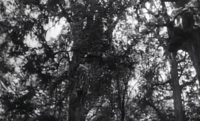 Тарзан и дьяволица - Tarzan and the She-Devil