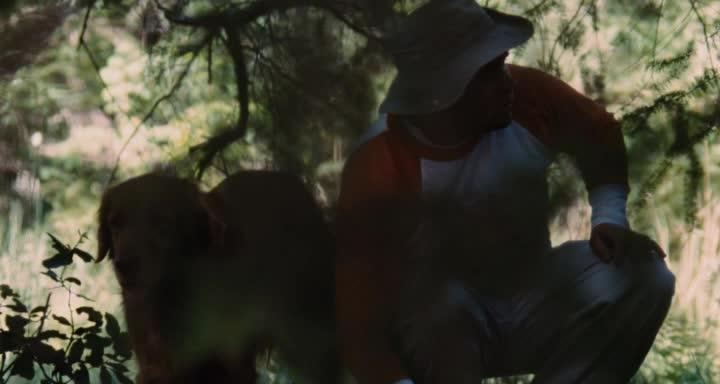Охота на кабана - Pig Hunt