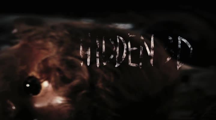 Затаившиеся 3D - Hidden 3D