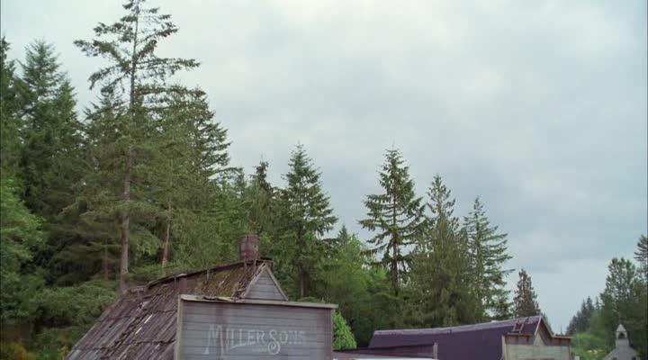 Виверн - крылатый дракон - Wyvern