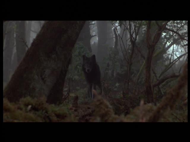 Бенджи-охотник - Benji The Hunted