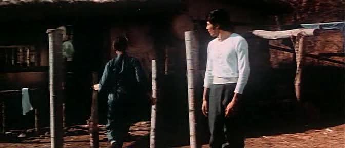 Леди Вихрь - Tie zhang xuan feng tui
