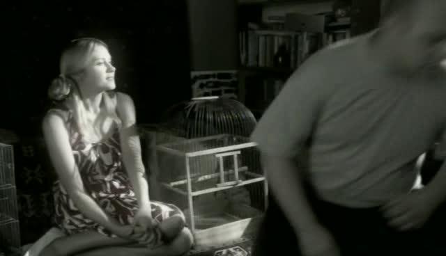 Елка, кролик, попугай