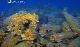 National Geographic. Тайны Мертвых. Потерянные корабли Древнего Рима - National Geographic. Lost Ships of Rome