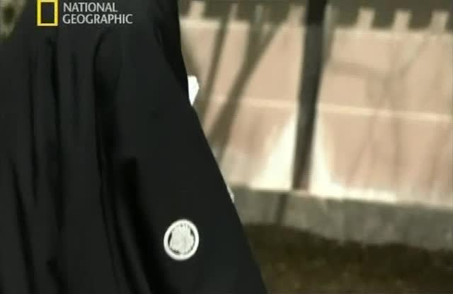 Самурайский меч - Samurai Sword