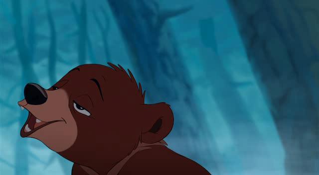 Братец медвежонок 2 | смотреть онлайн, скачать torrent бесплатно.