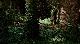 Мега-Питон против Гатороида - Mega Python vs. Gatoroid