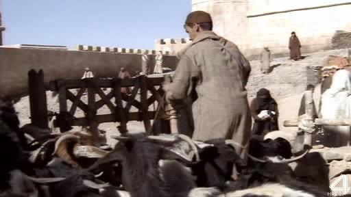 Крестоносцы - The New Crusaders