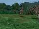 КОНГ: возвращение в джунгли - KONG: return to the jungle