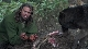 National Geographic: �������-���� - National Geographic: The Wolfman