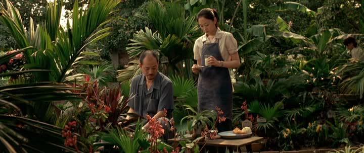 Дочери ботаника - Les filles du botaniste