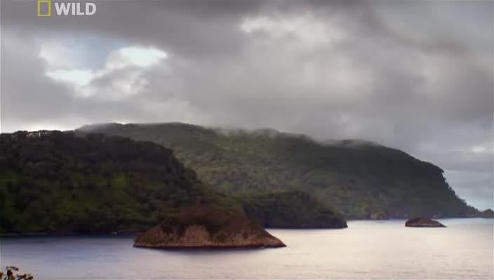 ������ ������ - Shark Island