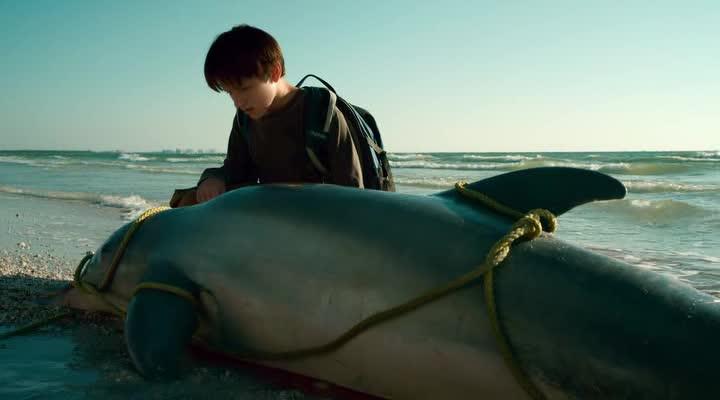 История дельфина - Dolphin Tale