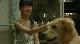 10 обещаний моей собаке - Inu to watashi no 10 no yakusoku