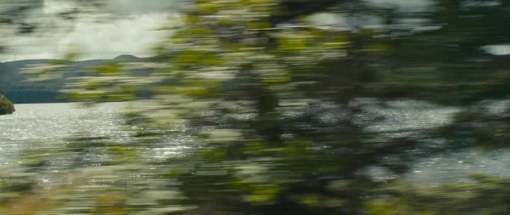 Плетеное дерево - The Wicker Tree