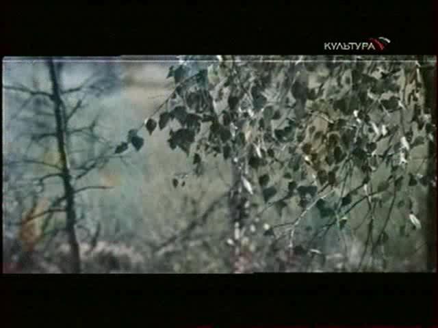Рысь возвращается - Rys vozvrashchayetsya