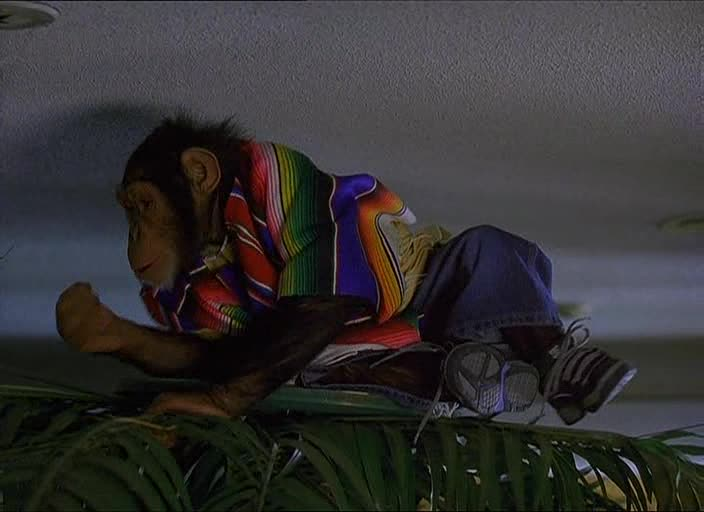 ������ ��������� - MXP: Most Xtreme Primate