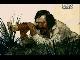 Настоящая история Робинзона Крузо - Robinson Crusoe The true story