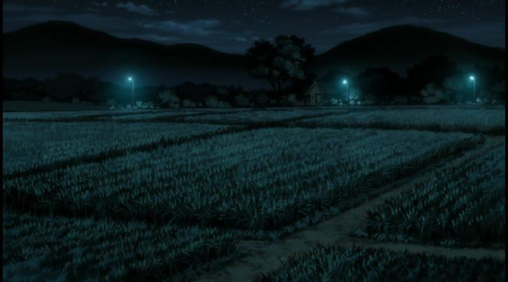 В лесу мерцания светлячков - Hotarubi no Mori e