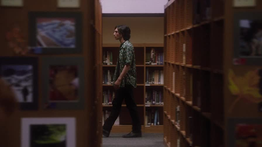 ������ ���� ������� - The Perks of Being a Wallflower