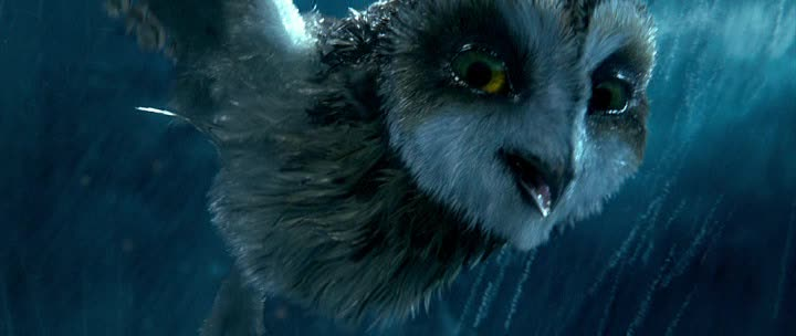 ������� ������ ������� - (Legend of the Guardians: The Owls of Ga'Hoole)