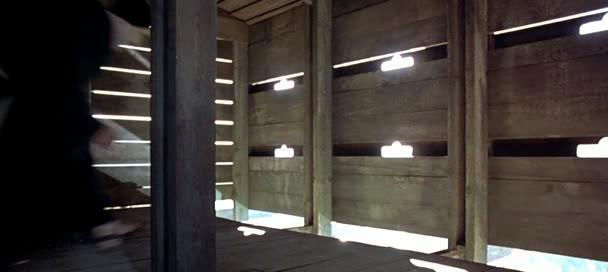 Пришельцы II: Коридоры времени - Couloirs du temps: Les visiteurs 2, Les