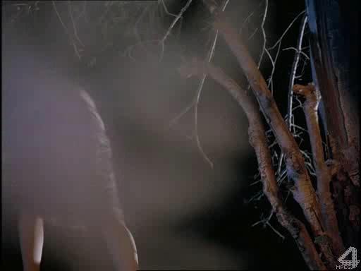 Чужой - Project Viper