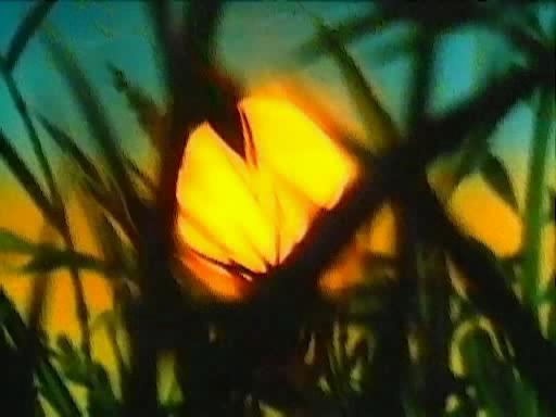 Путешествие муравья - Puteshestviye muravya