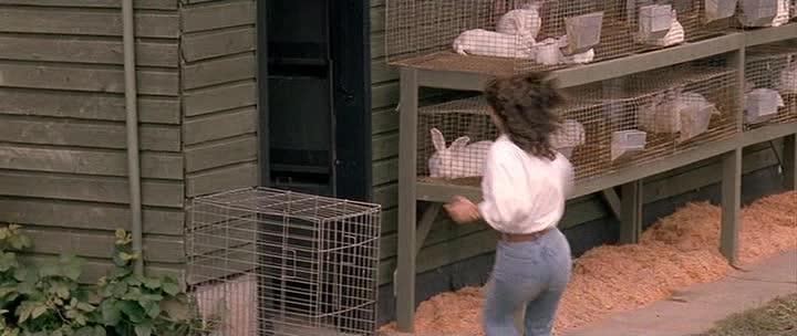 Птичка на проводе - Bird on a Wire