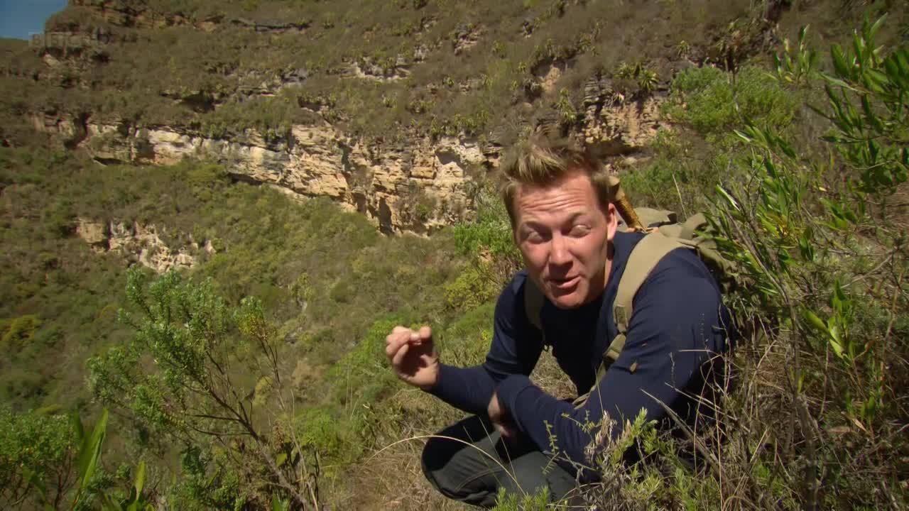 BBC: ���������� ����������� ����� ������� - BBC - Lost Kingdoms of South America