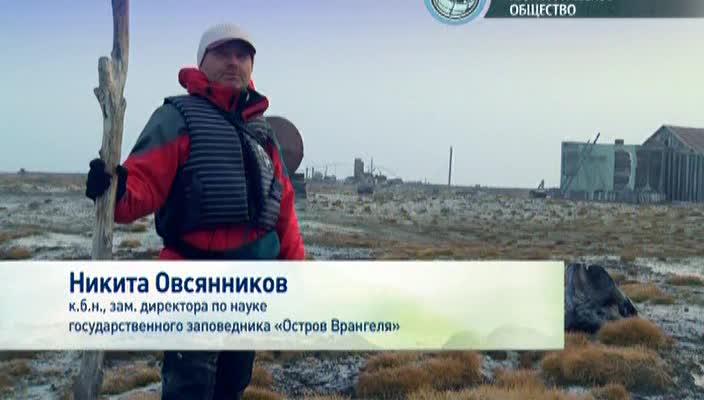 Новосибирские острова загадки земли